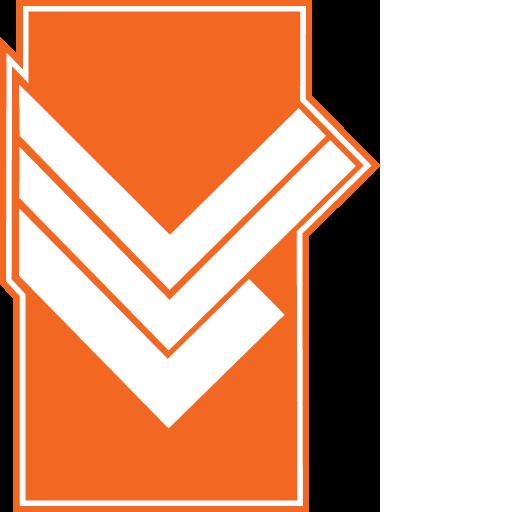 VV Lemelerveld